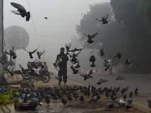 पाकिस्तानमधील लाहोर शहरात धुक्याची दुलई