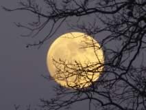 अमेरिकेची आणखी एक चांद्र मोहीम, चंद्रावर जाणारी पहिली महिला असेल अमेरिकन