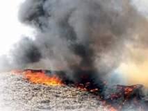वीज तारांचा स्पार्क; सोलापूर महानगरपालिकेच्या कचरा डेपोला आग