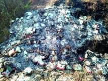 कीटकनाशक, खतांचा बेवारस माल जाळून पुरावा केला नष्ट!