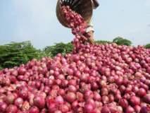 कांद्याचे दर कोसळल्याने शेतकरी चिंतातूर