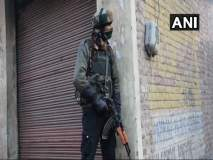 Pulwama Terror Attack : जवानांनी बदला घेतला; 'जैश'च्या दोन कमांडर्ससह 6 दहशतवाद्यांचा खात्मा
