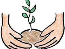 लातूर जिल्ह्यात वृक्षसंवर्धन करणाऱ्या ग्रामपंचायतीस १० लाखांचा निधी