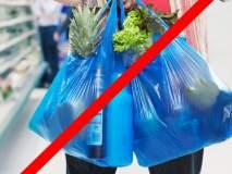 मीरा-भार्इंदरमधून ५२ किलो पिशव्या जप्त, पिशव्यांची दिवसरात्र खुलेआम विक्री