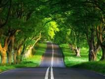 बंगळुरु ते पुदुच्चेरी रोड ट्रिप, नोव्हेंबर आहे परफेक्ट टायमिंग!