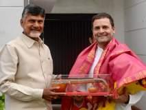 राहुल गांधी-चंद्राबाबूंचे हातात हात, एकत्र लढणार भाजपाच्या विरोधात!