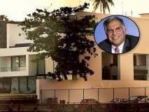 रतन टाटा यांचं आलिशान घर आतून कसं दिसतं? बघा फोटो
