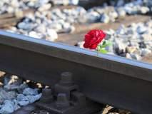 Valentine Day : मिरजेतून रेल्वेने दिल्लीला गुलाबाची मोठी निर्यात, डच गुलाबाचा दर वधारला