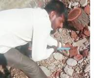 सापासोबत स्टंटबाजी, युवकानं गमावला जीव