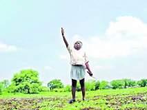 शेतकरी संघटनांचे राजकीय पेव!