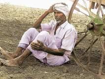 पावसाने दडी मारल्याने शेतकरी हवालदिल