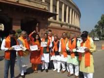 मराठी भाषेला अभिजात भाषेचा दर्जा मिळावा यासाठी शिवसेना खासदारांचं संसदेत आंदोलन