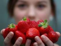 स्ट्रॉबेरीचे हे ५ गुण मानवी आरोग्यासाठी असतात फार उपयोगी