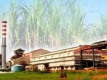 राज्यातील साखर कारखान्यांकडूनएफआरपीचे १३ हजार कोटी जमा