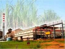 ऊस गाळपासाठी १९६ कारखान्यांचे अर्ज : २० आॅक्टोबर पासून हंगाम सुरु