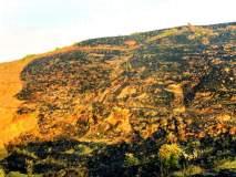 मांगरूळ डोंगरावरील वनसंपदा पुन्हा वणव्याच्या विळख्यात