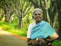 अतुलनीय कार्य! 384 वडाची झाडं लावणाऱ्या 106 वर्षीय आजीबाईचा 'पद्मश्री'नं गौरव