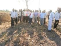 बुलडाणा : राजूर घाटातील पाणी वाघजाळ धरणात वळवा - विजयराज शिंदे