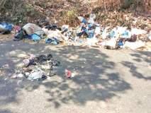 'अ'स्वच्छ भारत अभियान : गोव्यात रस्त्याकडील कच-याच्या ढिगा-यामुळे पर्यटक हैराण