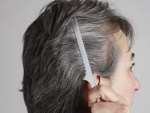 पांढरे केस तोडण्याची चूक करताय का?; वेळीच व्हा सावध