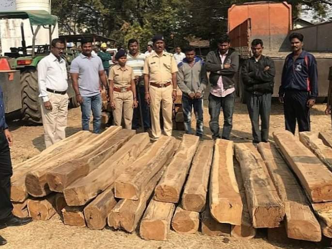 Three lakhs of teak wood seized in Gadchiroli | गडचिरोलीत तेलंगणात तस्करी होणारेतीन लाखांचे सागवान जप्त