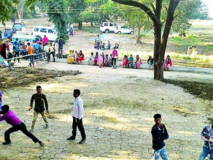 A crowd of tourists gathered in Navegaon Bandh | पर्यटकांच्या गर्दीने फुलले नवेगावबांध