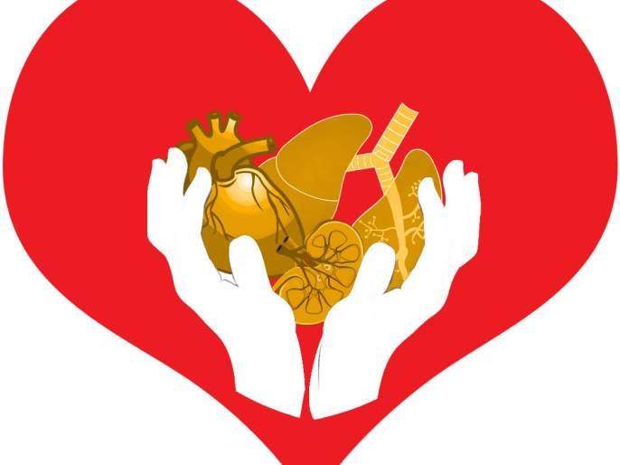 'Brain deed' person gives lives to three; Liver transplant in Mumbai, kidney transplant in Nagpur | भंडाऱ्यातील 'ब्रेनडेड'व्यक्तीकडून तिघांना जीवनदान; लिव्हर पाठवले मुंबईला तर किडनी प्रत्यारोपण झाले नागपुरात