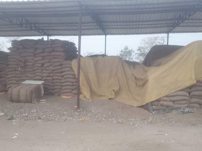 The 1500 quintal tur bought by the farmers was made by Nafeed | शेतकऱ्यांकडून खरेदी केलेली १५०० किंटल तूर 'नाफेड'ने केली परत