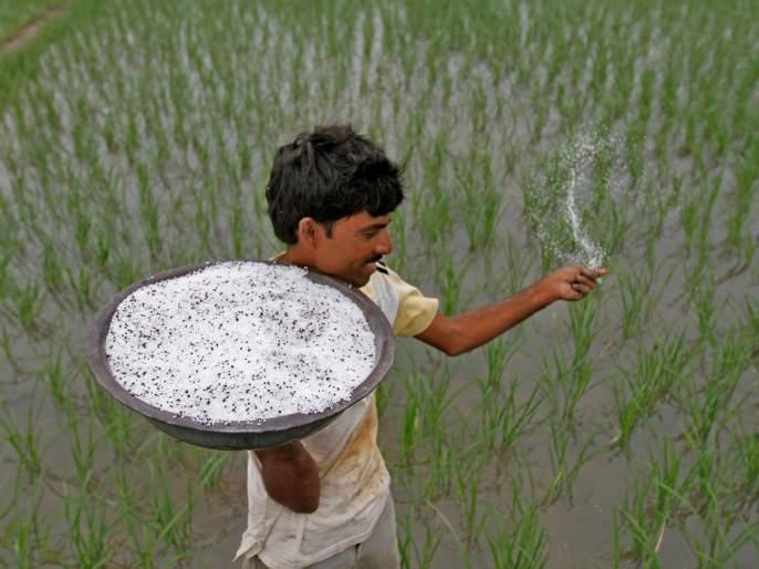 Fertilizers fuels cheaper prices; Tanaamage increase by 25 thousand rupees | रासायनिक खतांच्या किमती भडकल्या; टनामागे अडीच हजारांची वाढ