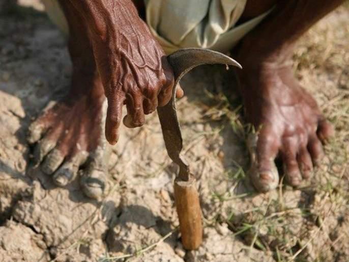 36,000 farmers of Gondia district has clean up Saatbara | गोंदिया जिल्ह्यातील ३६ हजार शेतकऱ्यांचा सातबारा झाला कोरा
