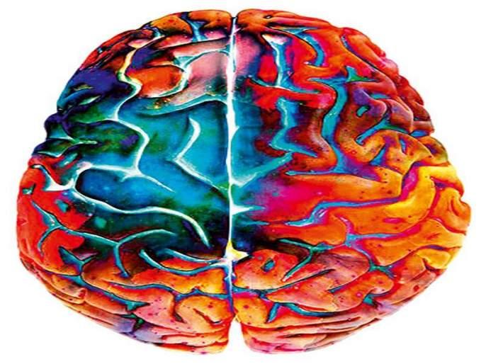 To search manuscript | मेंदूतला माणूस शोधण्यासाठी...