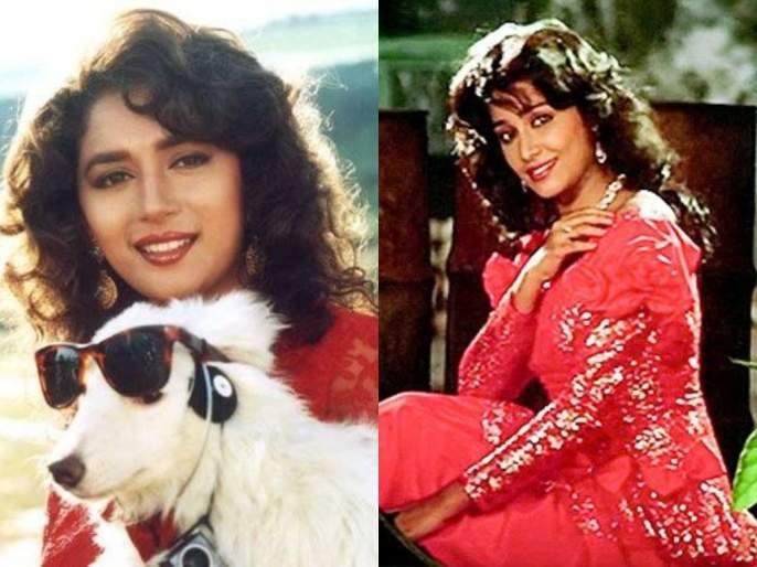 Madhuri Dixit's' Sam Two Same 'actress went abruptly in the' 90s   ९०च्या दशकातील माधुरी दीक्षितची सेम टू सेम अभिनेत्री अचानक गेली कुठे, आता करावं लागते 'हे' काम
