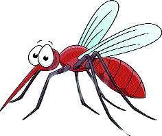 Measures to control dengueAnonymous: Chances of dengue effect due to humid climate | डेंग्यू नियंत्रणासाठी उपाययोजनामहापालिका : दमट हवामानामुळे डेंग्यूचा प्रभाव वाढण्याची शक्यता