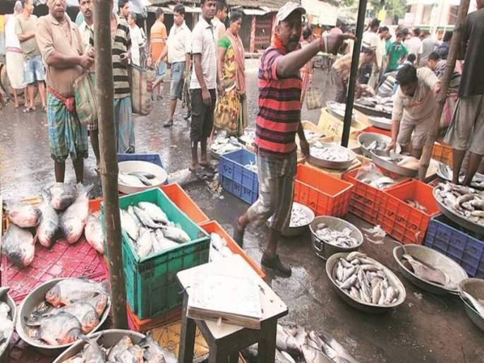 National Fisherfolk Forum demands Justice Chandrachud withdraw his fish market remark | 'काटा' रुते कुणाला; न्यायमूर्ती चंद्रचूड यांच्या 'त्या' वाक्याने मच्छिमार दुखावले!