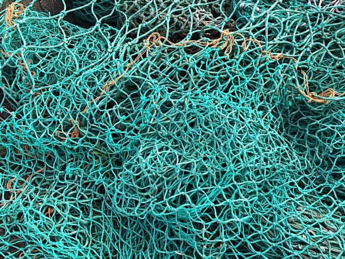 Fighter fights attackball movement demanded to stop fishing with LED light, Persegen Net | एलईडी लाईट, पर्ससीन नेटने होणारी मासेमारी बंद करण्याच्या मागणीसा मच्छिमारांचे हल्लाबोल आंदोलन