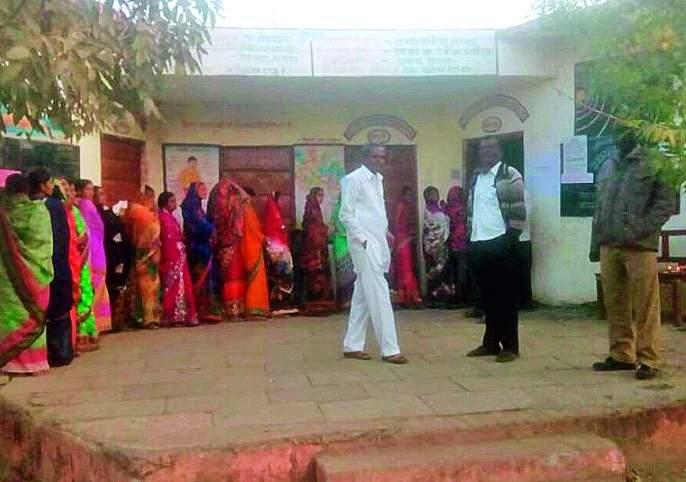 81 percent polling for 43 gram panchayats in Buldana district | बुलडाणा जिल्ह्यात ४३ ग्रामपंचायतींसाठी ८१ टक्के मतदान