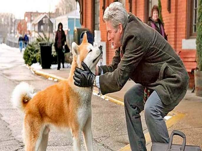 ..a dog tale! Two beautiful experiences of learning love language | ..अ डॉग टेल! प्रेमाची अबोल भाषा सांगणारे दोन सुंदर अनुभव