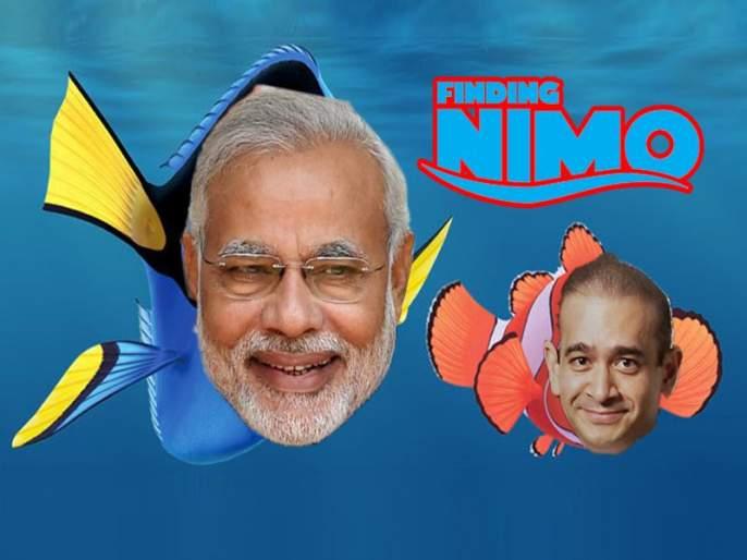 Finding NiMo and Chota Modi Social Media after PNB scam | PNB scam: सोशल मीडियावर 'छोटा मोदी' आणि 'फाईंडिंग निमो' ट्रेंडमध्ये