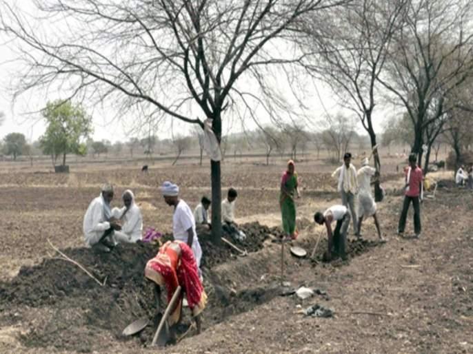 The state circulation plan of MNREGA scheme, the decision of the state government on the backdrop of drought | मनरेगा योजनेचा राज्य अभिसरण आराखडा, दुष्काळाच्या पार्श्वभूमीवर राज्य शासनाचा निर्णय