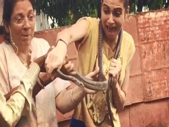 Punjabi actress simran kaur mundi escaped from snake bite, viral video stunned you | विषारी सापाला गळ्यात लटकवणाऱ्या अभिनेत्रींसह घडलं असं काही की पाहून अंगावर काटा येईल