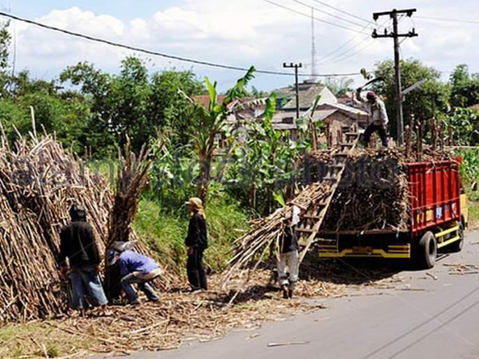 Satara: Plant the prices of sugarcane on the notice boards in five days, District Collector's notice   सातारा : पाच दिवसांत उसाचा दर कारखान्यांच्या नोटीस बोर्डांवर लावा,जिल्हाधिकाऱ्यांच्या सूचना