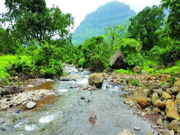 tourism ban in Thane district ! | ठाणे जिल्ह्यात पर्यटनबंदी! जिल्हाधिकाऱ्यांच्या फर्मानाने नाराजी