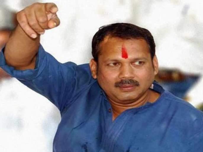 Ganesh Chaturthi 2018: Owned by the Poles on Tuesday; Will be immersed in the water: Udayan Raje | 'गुन्हा दाखल झाला तर माझ्यावर होईल, पण विसर्जन मंगळवार तळ्यातच केलं जाईल'