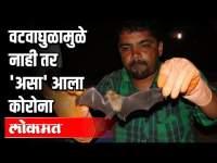 कोरोना विमानातून आला, वटवाघुळामुळे नाही   Coronavirus Spreads from Bats to Humans? Pune News