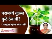घरामध्ये तुळस कुठे ठेवावी? Where to Keep Tulsi at Home? Sushma Ramesh Palange | Vaastu for home