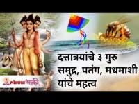 दत्तात्रयांचे ३ गुरु असलेले समुद्र, पतंग आणि मधमाशी यांचे महत्व | Shree Dattatray | Lokmat Bhakti