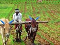 जिल्ह्यातील ८०० शेतकरी पहिल्या यादीत
