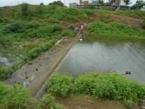 सहा वर्षांनतर मेहरुण तलाव 'ओव्हर फ्लो'