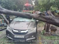धक्कादायक! ठाण्यात चालत्या कारवर झाड कोसळले: कारमधील डॉक्टरची सुखरुप सुटका - Marathi News | Shocking! A tree fell on a moving car in Thane: The doctor was safely released from the car | Latest thane News at Lokmat.com