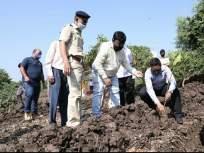 मेट्रो ३ : ८ हजार ८८८ कांदळवन रोपट्यांचे होणार रोपण - Marathi News | Metro 3 : 8 thousand 888 Kandalvan saplings will be planted | Latest mumbai News at Lokmat.com